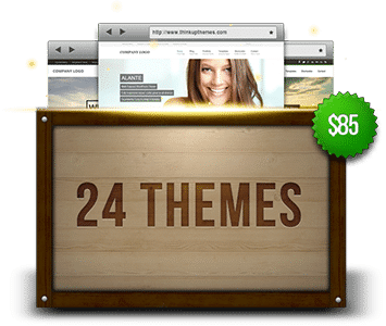 theme_count_24